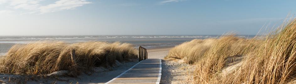 Die Nordseeküste und das Wattenmeer