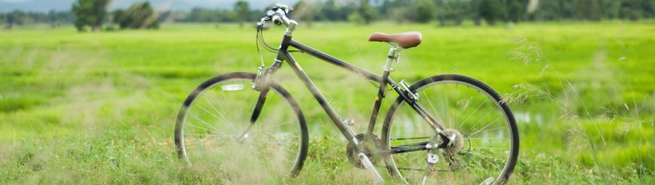 5 Fahrradrouten, die ihr ausprobieren müsst