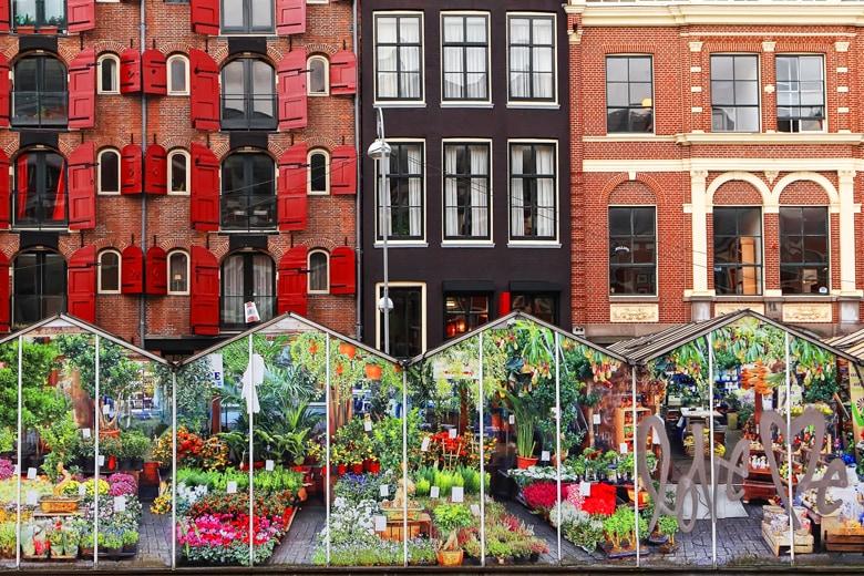 Märkte in Amsterdam Schwimmender_Blumenmarkt