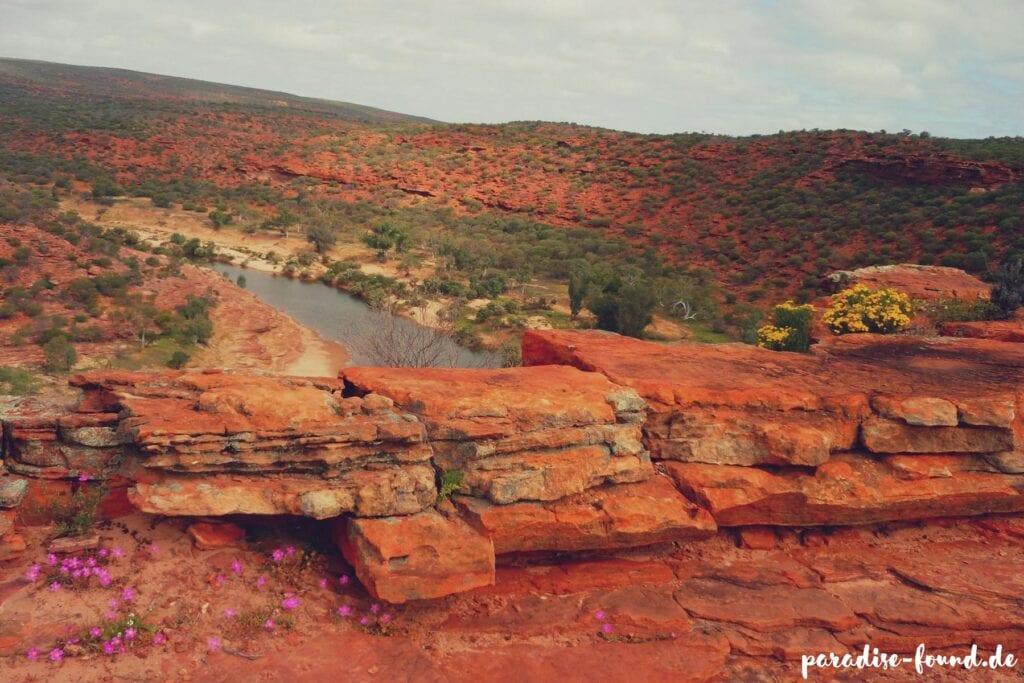 Interview Paradise Found Australien