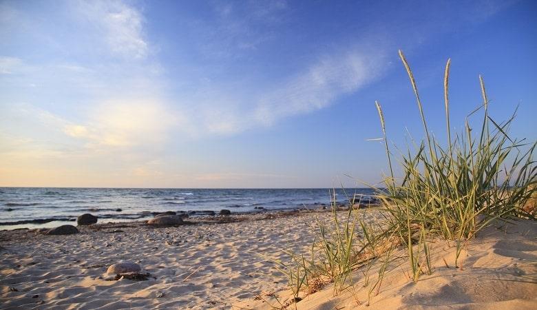 Urlaub im Juni in Belgien an der Küste