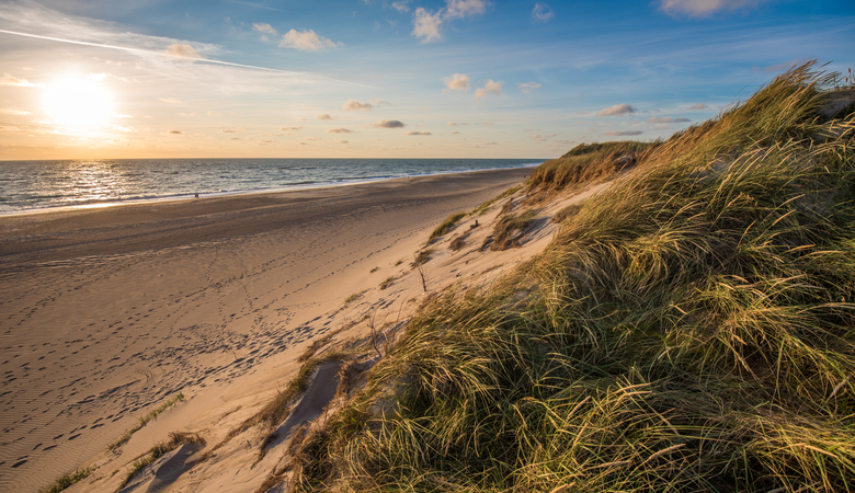 Urlaubsziel in Mai: Urlaub am Meer in Dänemark
