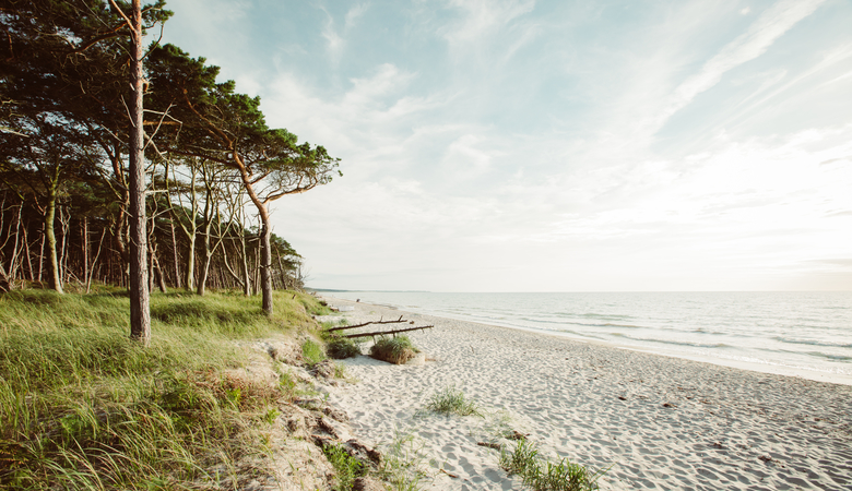 Geheimtipp: Weststrand Darß
