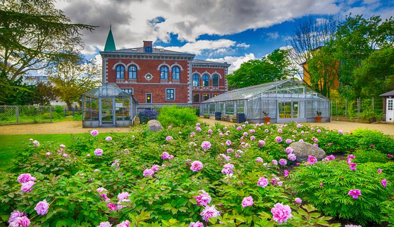Kopenhagen Sehenswürdigkeiten - Botanischer Garten